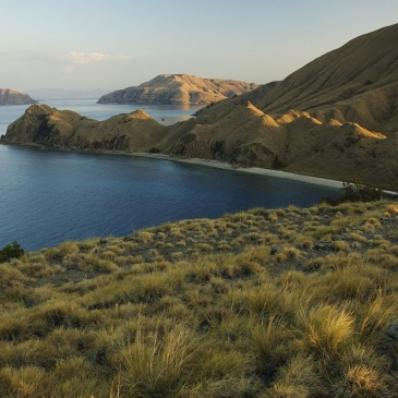 Red Whale Dive Center - Komodo Island